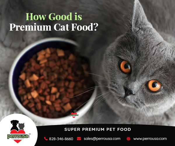 How Good is Premium Cat Food for Your Feline?